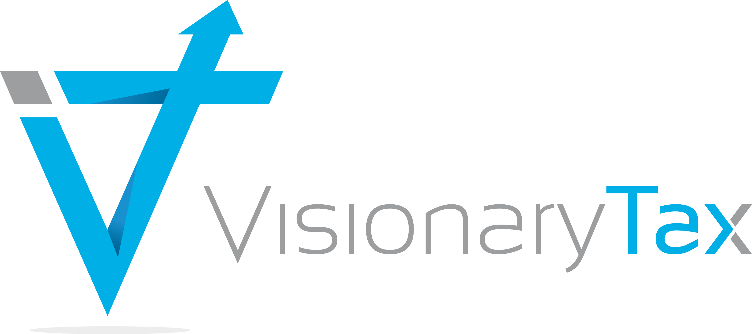 Visionary Tax